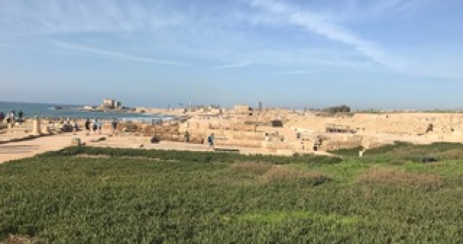 Rev. Dr. Williams Preaches at the Garden of Gethsemane (CCBC's 2018 Israel trip – 3/11/18)